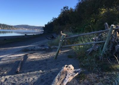 Resources for Shoreline Landowners