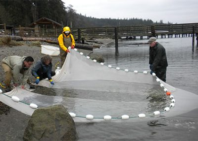 Shoreline Restoration Citizen Monitoring Program